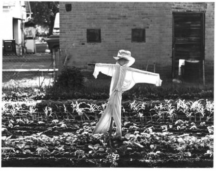 Scarecrow, Florence, Colo
