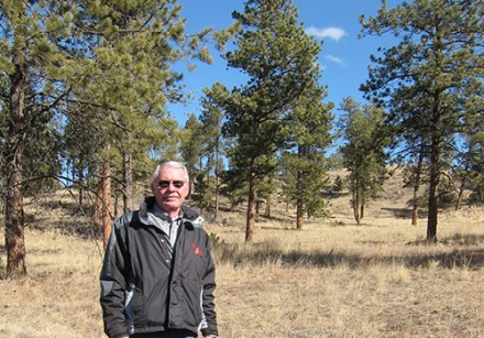 Forest ecologist Merrill Kaufman stands in a treated forest area. Photo: Michelle Mercer